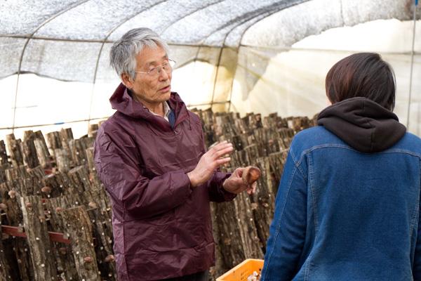 原木しいたけをつくる岩田英男さん